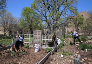 Volunteer for the Sustainability Garden Work Day