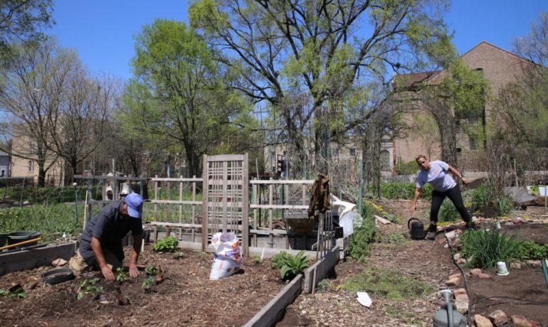 Volunteer for the Sustainability Garden Work Day