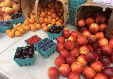 Downtown Hyde Park Farmers Market Postponed until 2021